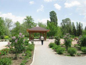 Ботанический сад в Нижнем Новгороде